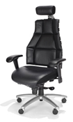RFM Verte Executive Back Chair